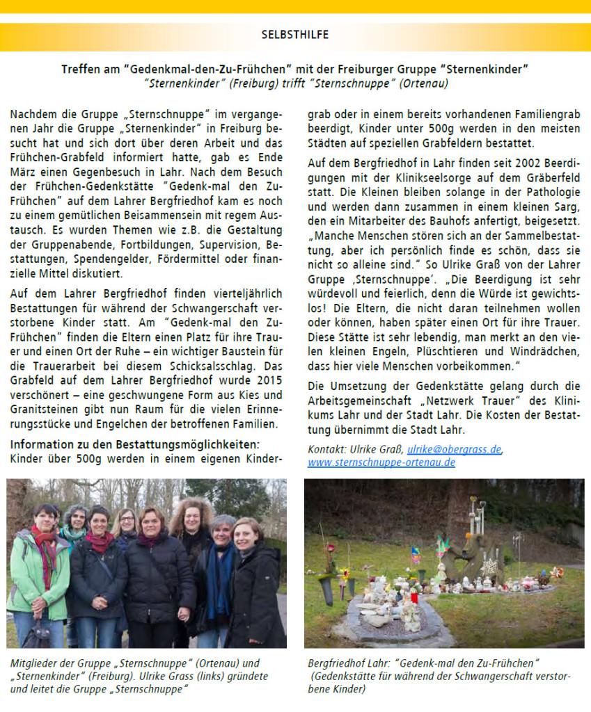 20150721-Rundbrief-Ortenaukreis-2015-Sternschnuppe